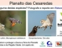 Campanha Fauna das Cesaredas (Setembro 2020)